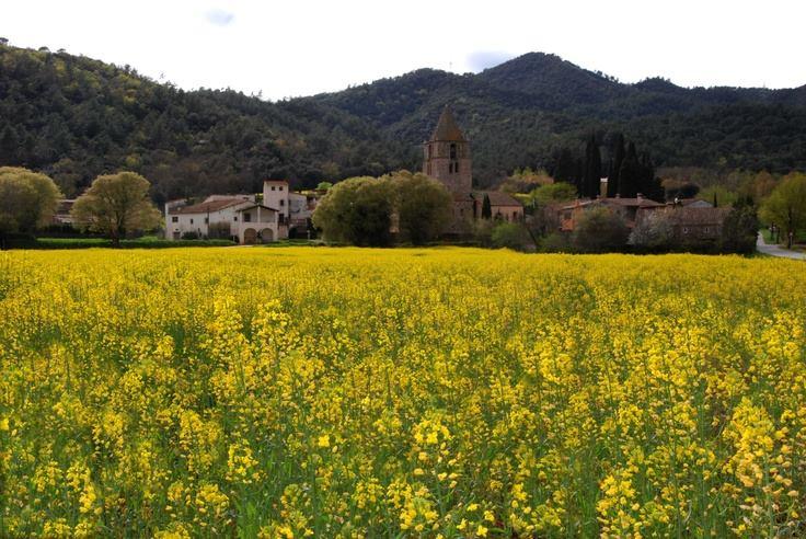 Entorn Sant Gregori vall del llémena