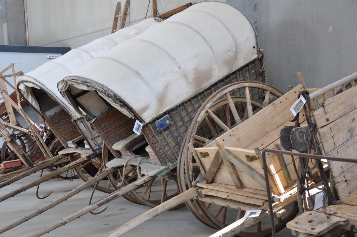eines del camp del museu de campllong
