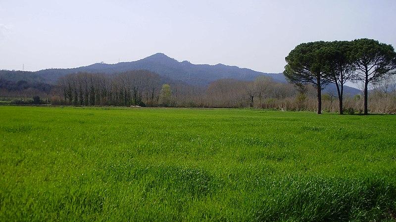 Vall_del_Llémena